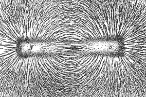 A magnetic field revealed by iron filings near a magnet.