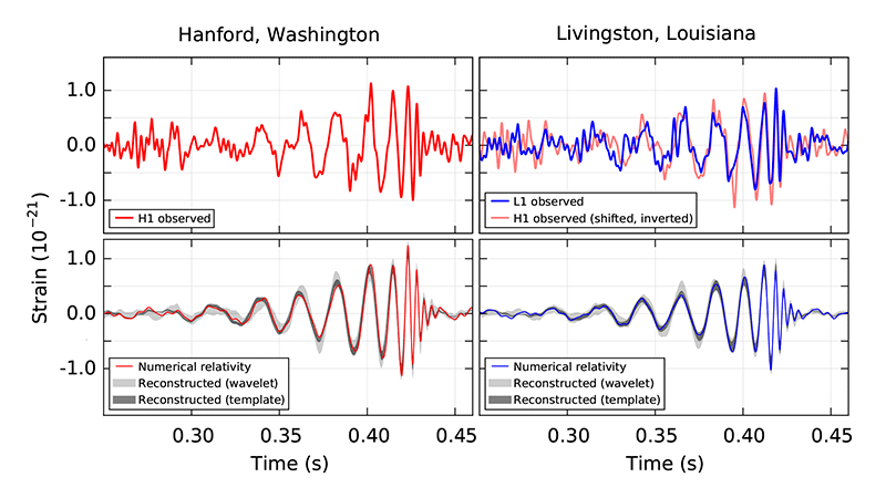 The event as seen in the two LIGO detectors (above) compared to the numerical model fits (below). Credit: B. P. Abbott et al.